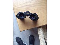 Vickers Adlerblick 8x42 binoculars