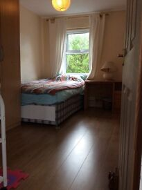 Double room for a working professional, close to Addenbrooke's and Mill road.