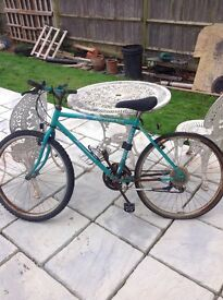 Two mountain bikes approx 20 years old