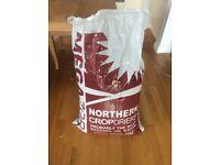 HUGE full bag of Hamster/Guinea Pig/Small Animal Bedding