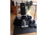 Dumbbell bars with weights up to 12