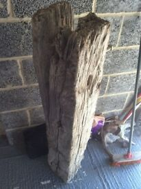 Large solid oak groyne salvaged from Chichester sea defences