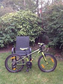Cube 200 Mountain Bike