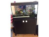 Fluval tropical fish tank