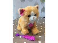 FurReal Friends Daisy Plays With Me Kitty Cat Interactive Toy