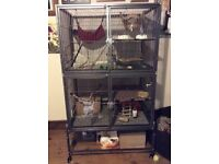 Large rat/ferret cage and £100+ of accessories included (CAN BE SOLD SEPARATELY)