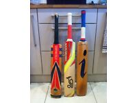 Various Cricket Bats & Accessories for sale - individual prices