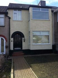 Double Bedroom For Rent (House Share)