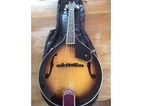 Mandolin - Morgan M20