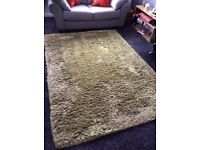 Green long pile rug. Very soft
