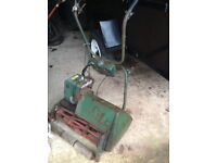 Large petrol cylinder mower