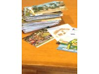 A collection of postcards