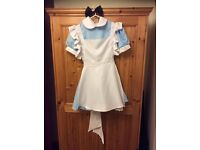 Alice in Wonderland Party Dress