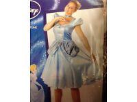 Fancy Dress Sale