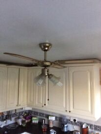 Fan/triple light fitting