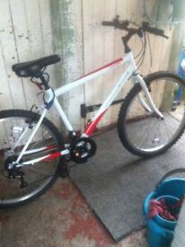 Push bike for sale