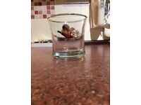 Whisky Grouse glass with grouse emblem