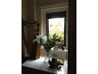 Single Room to Let, available for weekly let until 14/12/16