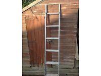 Step/stair ladder