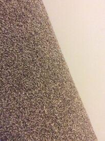 Brand new brown/coffee carpet 8' x 8'