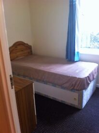 Single room in ground floor flat - available immediately!!!!!