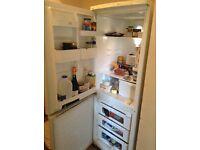 Tall Daewoo fridge freezer BS6, free