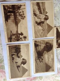 5 Vintage Postcards of the Pyramids and Sphinx.