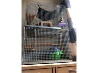 Chinchilla 2 Tier cage and stand - Free * No longer available*