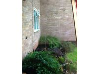 1 bed bungalow Clifton want sneinton exchange only