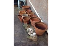 A Large Selection of Terracotta Plant Pots