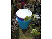 Bokashi Compost Bins X 2