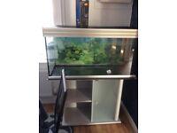 Large fish tank good condition silver/light grey