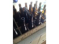 Westvleteran bottles and caps