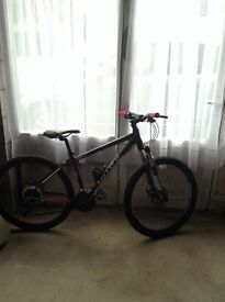 "Ladies Carrera Mountain Bike 14"""