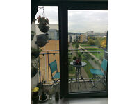 lovely 2 bed/flat in thamesmead SWAP 2-3 bed/house in margate