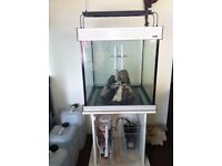 Aqua one 175 with stand has 50liter central custom made 5 stage sump with full marine set up