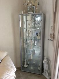 Silver Glass cabinet two door with light