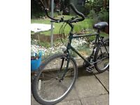 Men's bike, sale due to children grown up full working condition Raleigh mountain bike , gel seat
