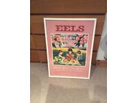 Eels Mr E's Beautiful Blues Frmaed Poster