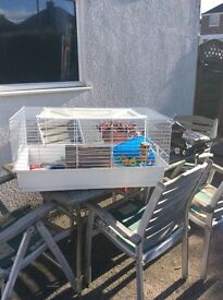 small snimal cage for house rabbit or Guinea pigs.