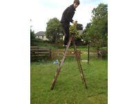 7 Foot Wooden Ladders