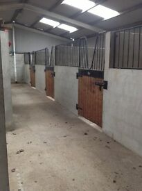 STABLES AND SAND SCHOOL FOR RENT (livery, horse, stable, menage, diy, equestrian, sand-school)
