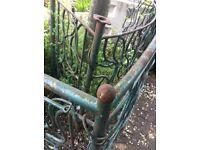 Bespoke steel fencing