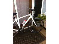 Trek 7.3 road bike