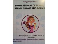 Professional cleaning service Home & Office