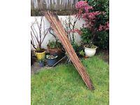 Large bundle bamboo canes