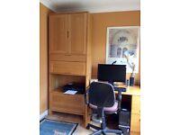Vector office chair