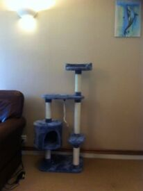 New and Unused Cat Tree. *Want gone ASAP*