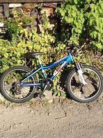 kids bike - ridgeback MX20 Terrain