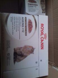 Royal canin cat food wet 12+